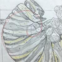 Sketchbook, detail